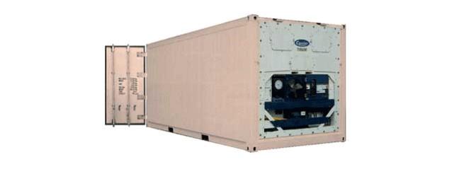 frigo-shipping-containers