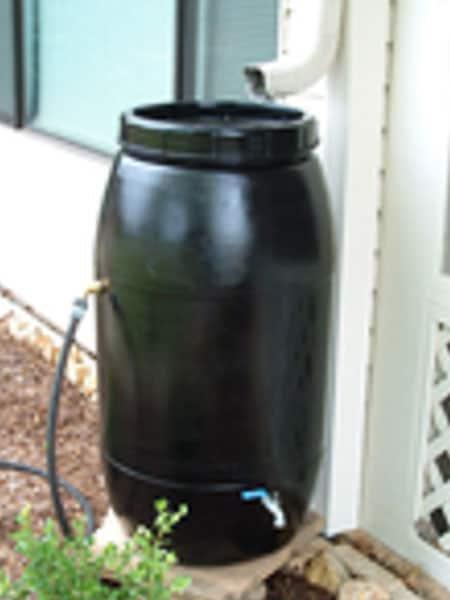 rainwater-barrel